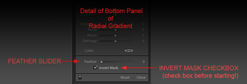 Detail Radial Filter (Radial Gradient Tool)