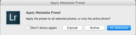 Apply metadata dialog