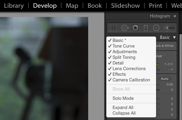 Contextual Menu showing the options in the Develop Panel