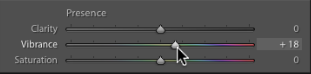 Making the most of the Lightroom Slider Adjustment