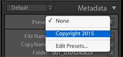 Preset appears in Metadata pulldown