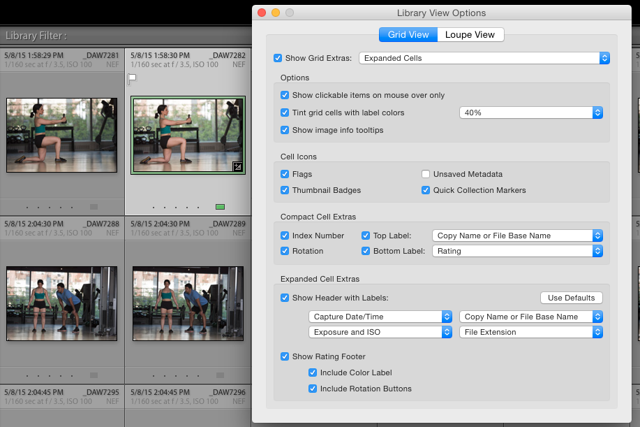 The Lightroom Grid View Options dialog box