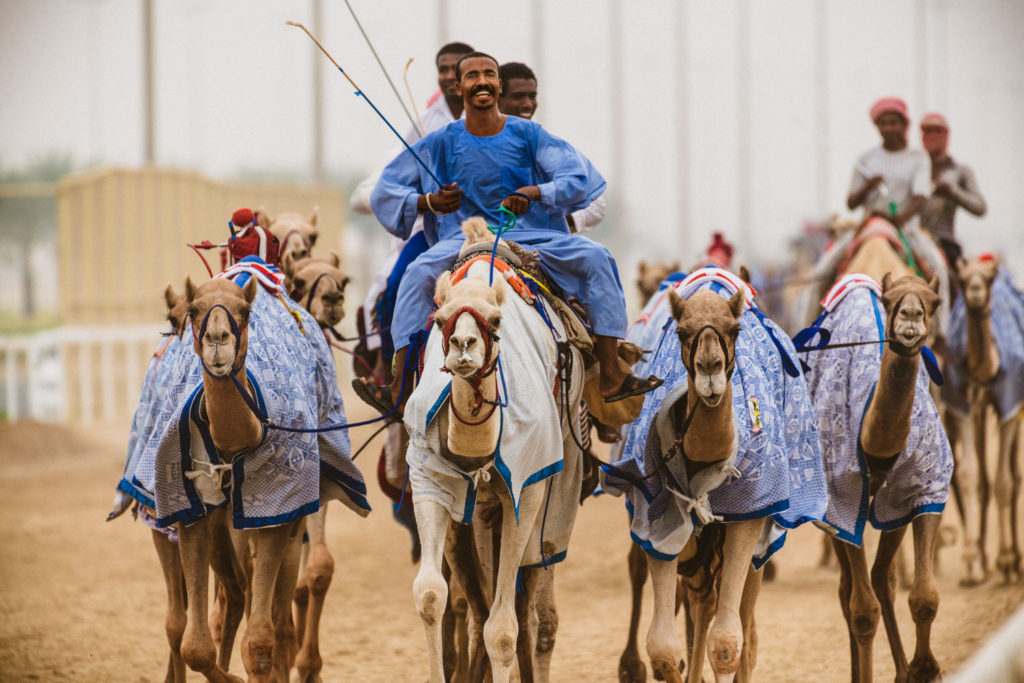Camel races at Al Shahaniya, Lightroom Workshops Doha 2019